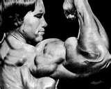 Bodybuilding Supplements Made Home Photos